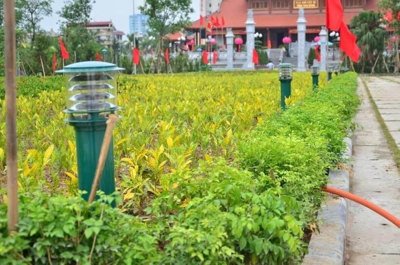Đèn sân vườn cây thông hiện nay được ưa chuộng ở mọi nơi